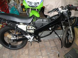 TZR1250186.jpg