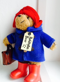 Paddington with ring