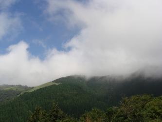 天城高原の眺め