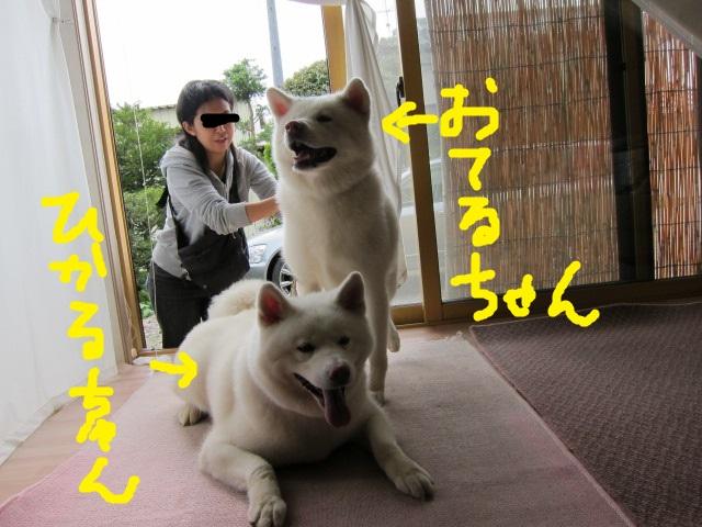 20150830_4747.jpg
