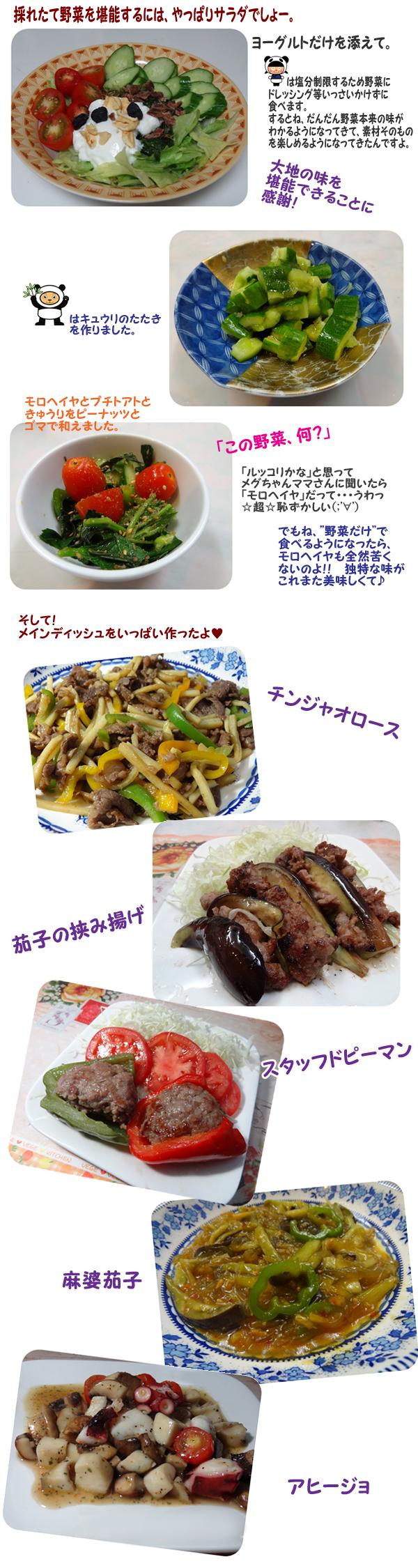 夏野菜でお料理 のコピー