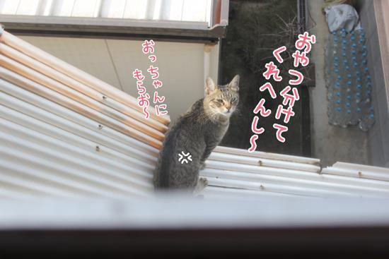 150827_10.jpg