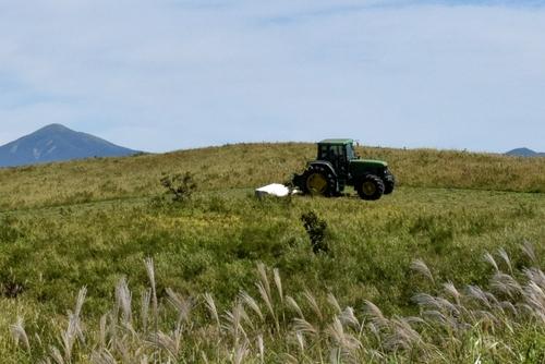 271003 牧草刈り5