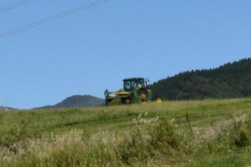 271003 牧草刈り11