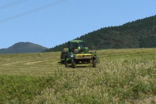 271003 牧草刈り12