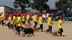 動物愛護フェスティバルえひめ 2015