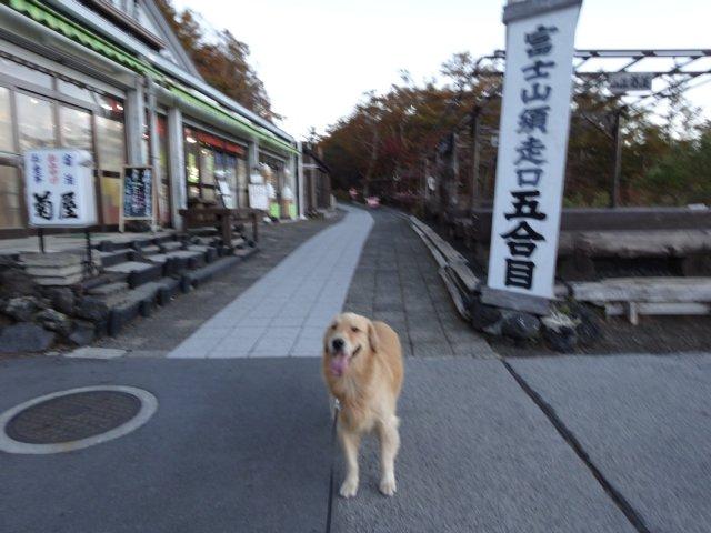 富士山 須走口 犬登山 2015-10-16 005