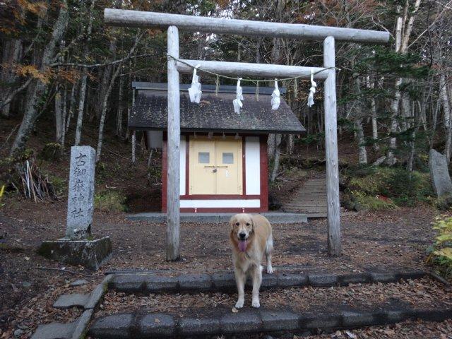 富士山 須走口 犬登山 2015-10-16 011