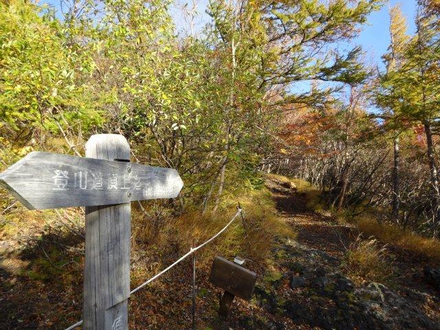 富士山 須走口 犬登山 2015-10-16 046