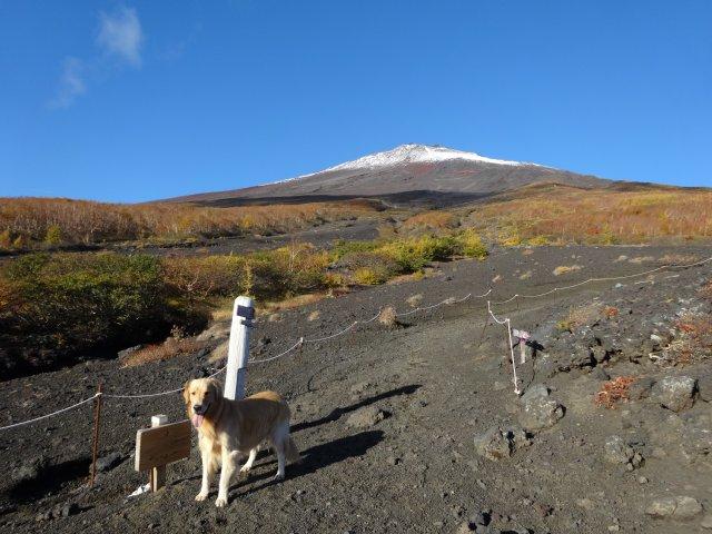 富士山 須走口 犬登山 2015-10-16 064