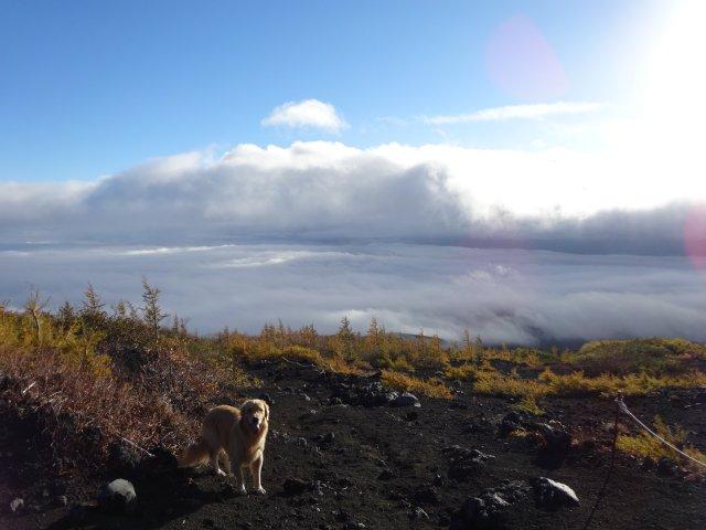 富士山 須走口 犬登山 2015-10-16 065