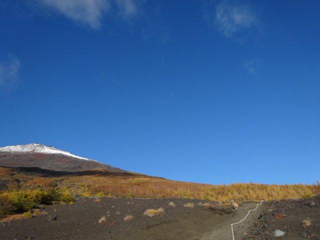 富士山 須走口 犬登山 2015-10-16 066