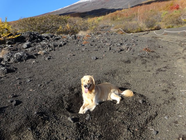 富士山 須走口 犬登山 2015-10-16 069