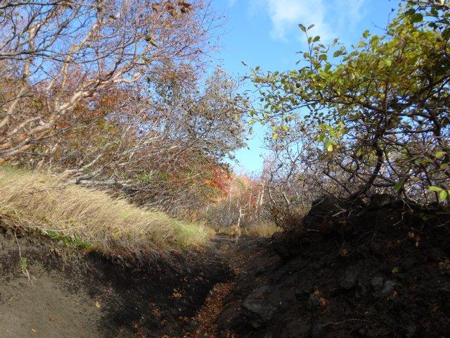 富士山 須走口 犬登山 2015-10-16 071