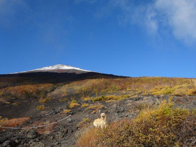 富士山 須走口 犬登山 2015-10-16 078
