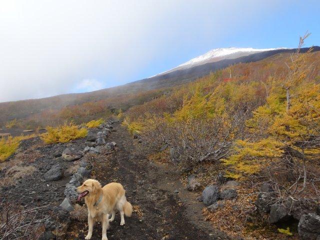 富士山 須走口 犬登山 2015-10-16 080