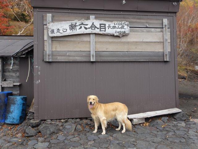 富士山 須走口 犬登山 2015-10-16 086