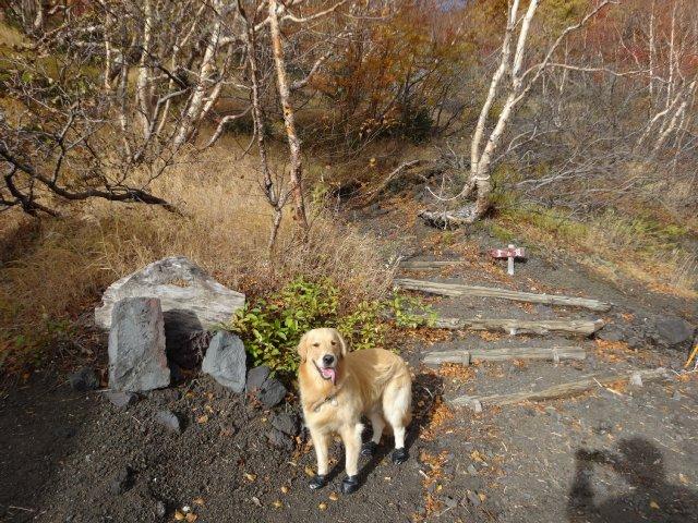 富士山 須走口 犬登山 2015-10-16 092