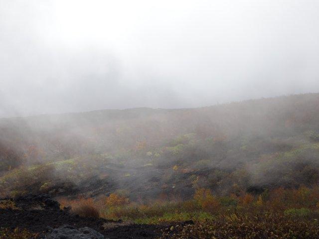 富士山 須走口 犬登山 2015-10-16 115