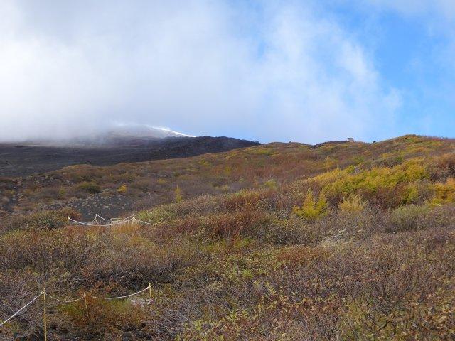 富士山 須走口 犬登山 2015-10-16 116