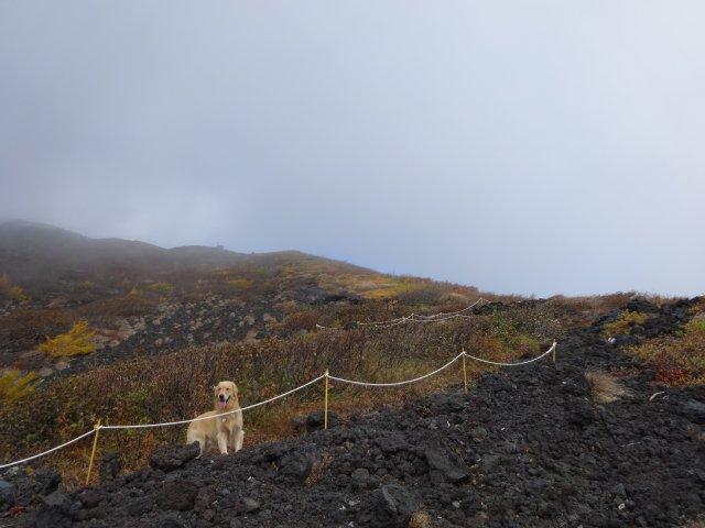 富士山 須走口 犬登山 2015-10-16 119