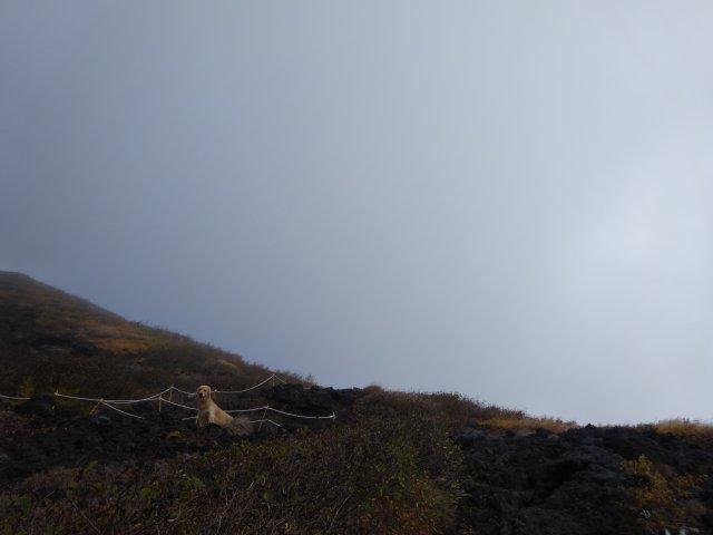 富士山 須走口 犬登山 2015-10-16 120