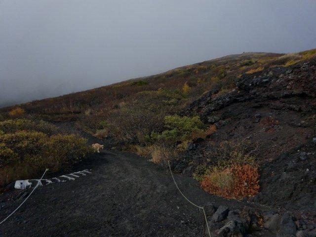 富士山 須走口 犬登山 2015-10-16 141