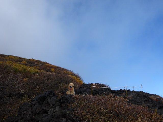 富士山 須走口 犬登山 2015-10-16 153