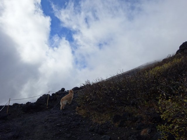 富士山 須走口 犬登山 2015-10-16 155