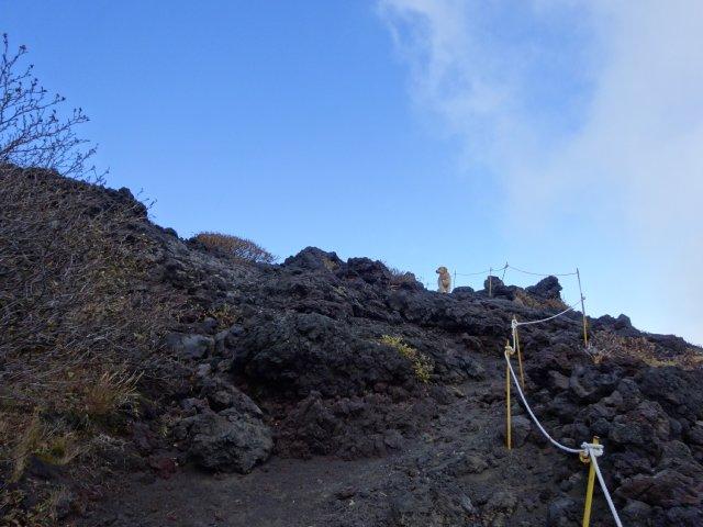 富士山 須走口 犬登山 2015-10-16 157