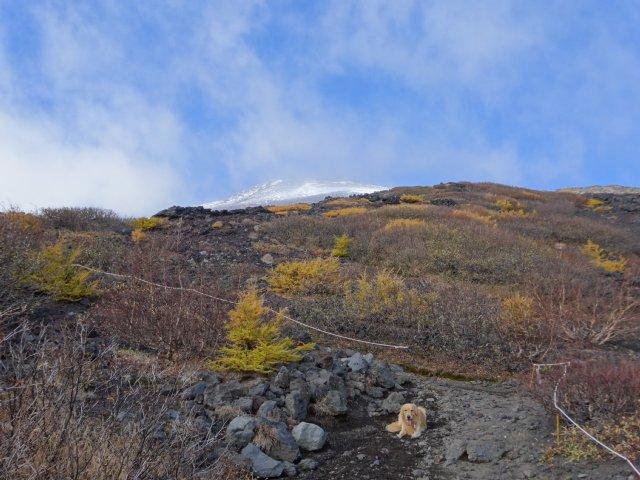 富士山 須走口 犬登山 2015-10-16 161