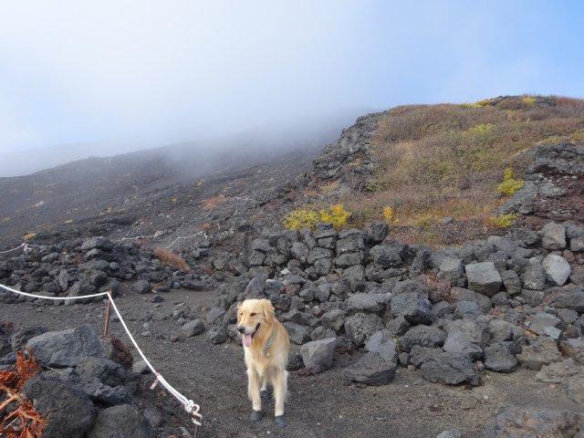 富士山 須走口 犬登山 2015-10-16 170