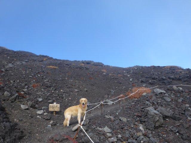 富士山 須走口 犬登山 2015-10-16 174