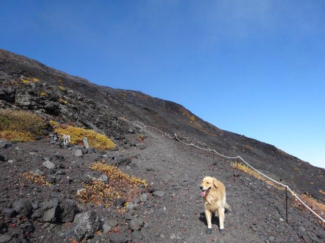 富士山 須走口 犬登山 2015-10-16 176