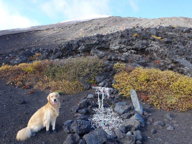 富士山 須走口 犬登山 2015-10-16 177