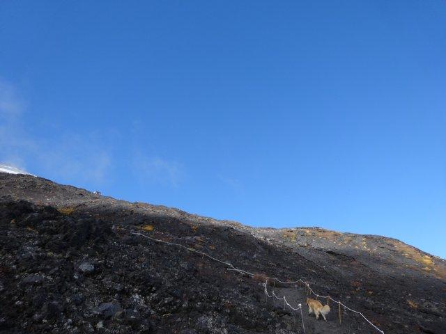 富士山 須走口 犬登山 2015-10-16 179