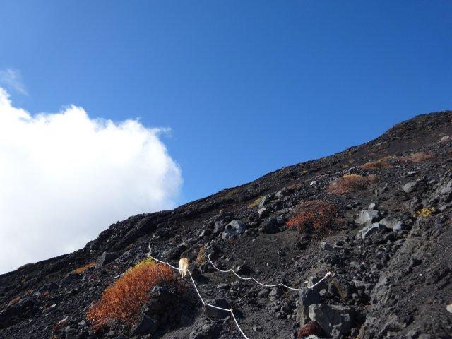 富士山 須走口 犬登山 2015-10-16 189