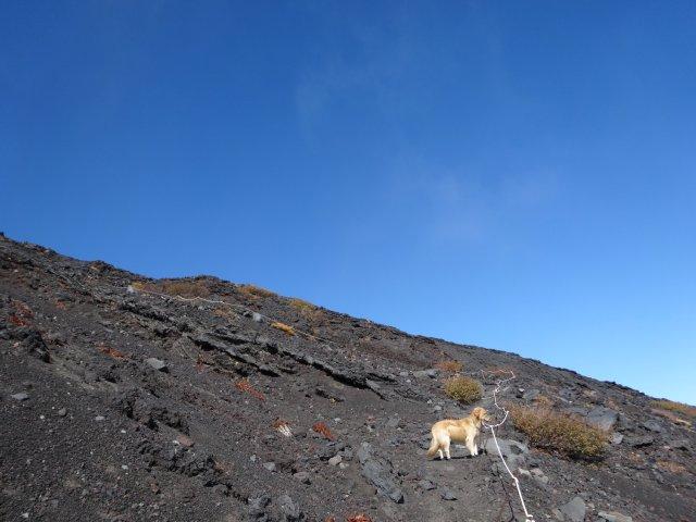 富士山 須走口 犬登山 2015-10-16 195