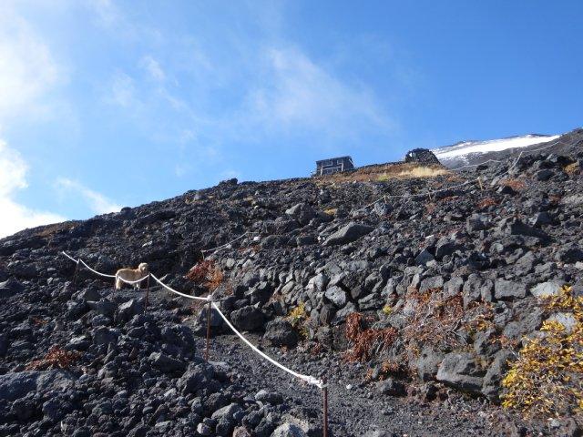 富士山 須走口 犬登山 2015-10-16 202