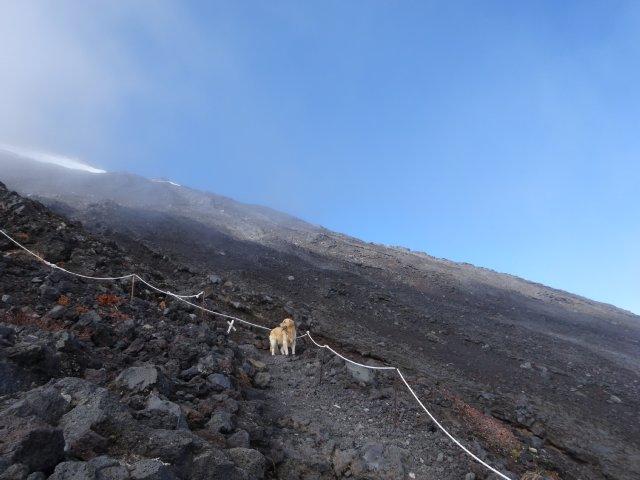 富士山 須走口 犬登山 2015-10-16 205