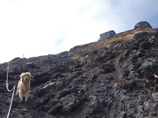 富士山 須走口 犬登山 2015-10-16 206