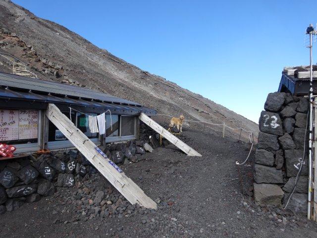 富士山 須走口 犬登山 2015-10-16 209