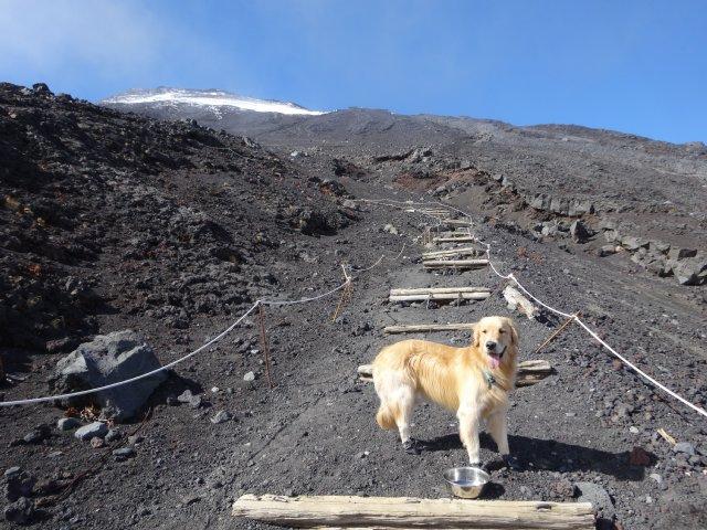 富士山 須走口 犬登山 2015-10-16 211