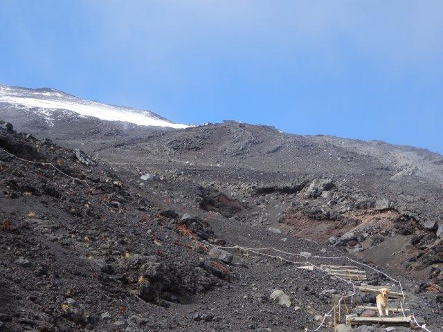 富士山 須走口 犬登山 2015-10-16 212