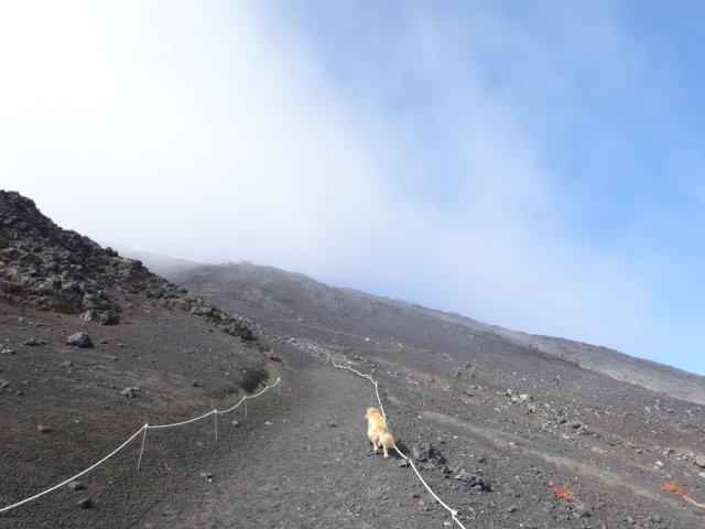 富士山 須走口 犬登山 2015-10-16 218