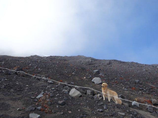 富士山 須走口 犬登山 2015-10-16 222
