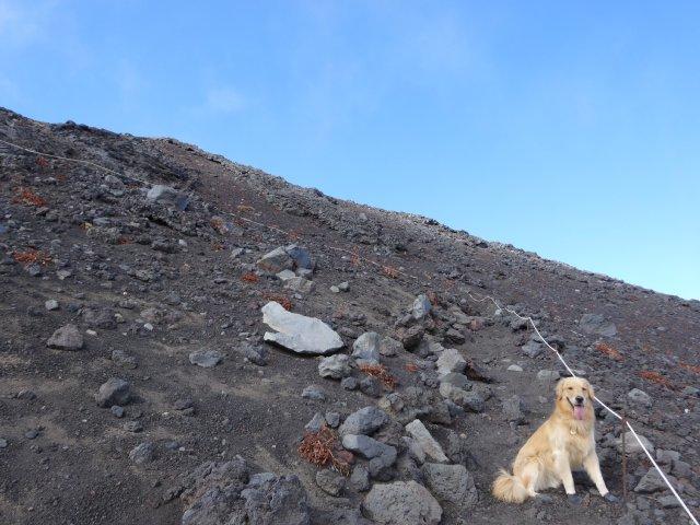 富士山 須走口 犬登山 2015-10-16 224