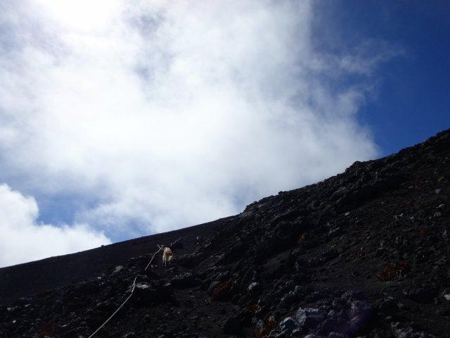 富士山 須走口 犬登山 2015-10-16 225