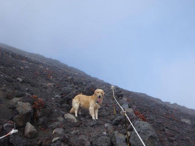 富士山 須走口 犬登山 2015-10-16 229