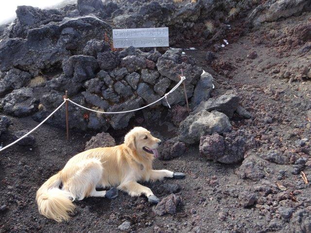 富士山 須走口 犬登山 2015-10-16 231